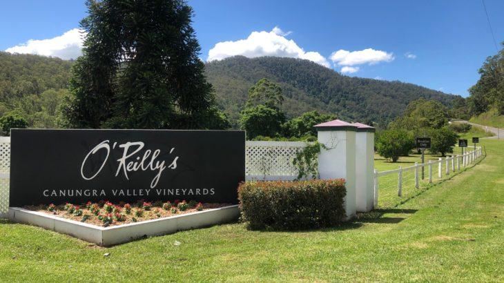 大好きなワイナリーへ。O'Reilly's Canungra Valley Vineyards